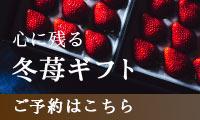 冬苺ギフト